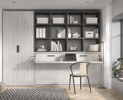 Raum mit Klappbett mit Schreibtisch und Regalen