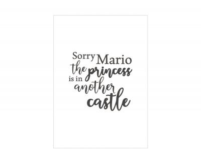 SORRY MARIO Rahmen